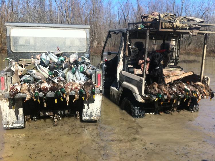 Arkansas duck season dates in Sydney